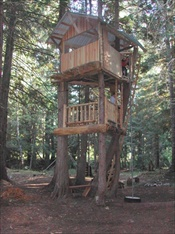 Custom Log Treehouse Kit